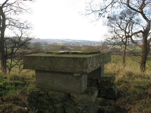 Hobby Hall's Stone
